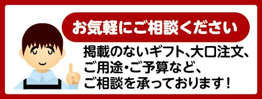 /fs_starting/okaimono_info_bn.jpg